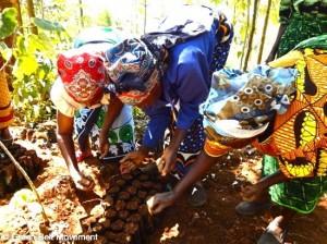 12-Women-planting