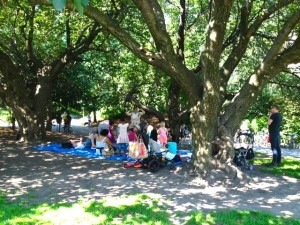 Storytelling beneath a tree in Prospect Park